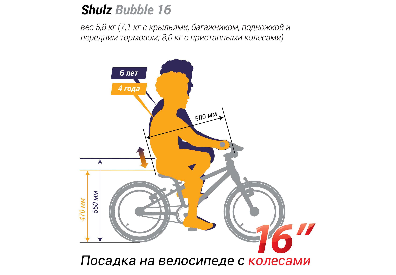 Shulz Bubble 16