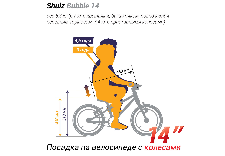 Shulz Bubble 14